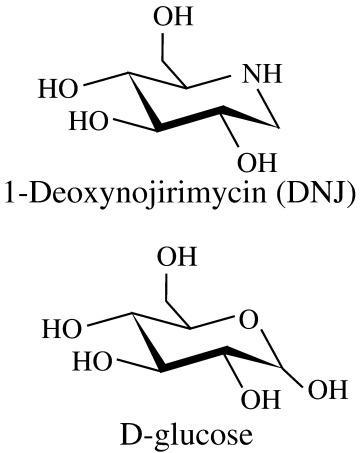 1-DNJ molecular structure