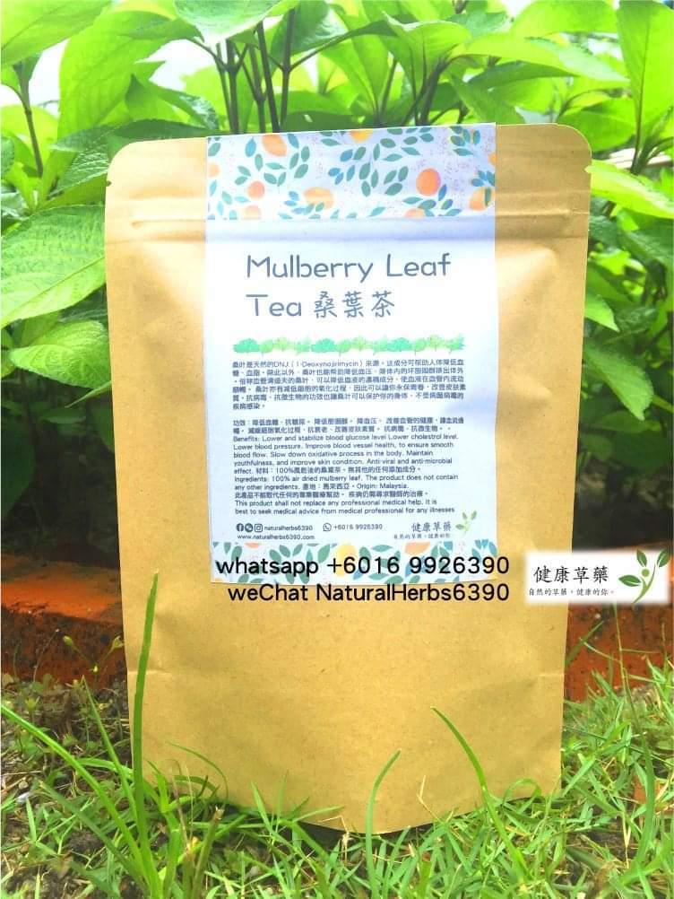 桑葉茶 Mulberry Leaf Tea