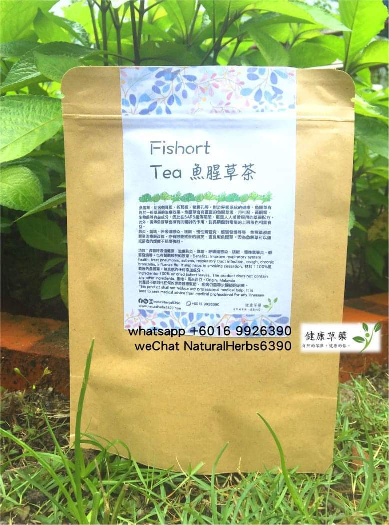魚腥草茶 Fishort Tea