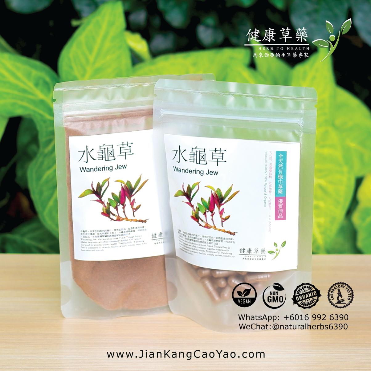 水龜草-草藥粉膠囊